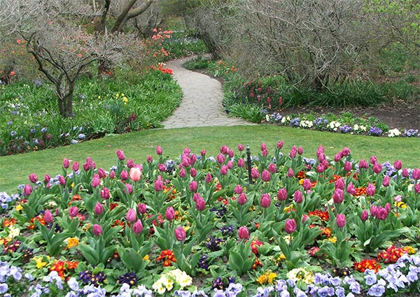 The annual bedding display is changed seasonally.