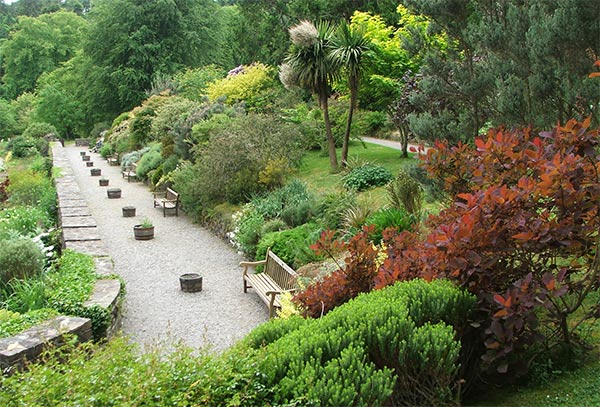 The wide border is filled with shrubs and perennials.