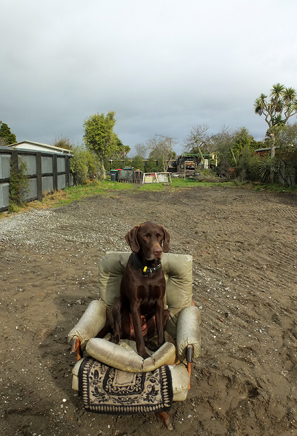 Sitting in his feral chair where his house verandah used to be.