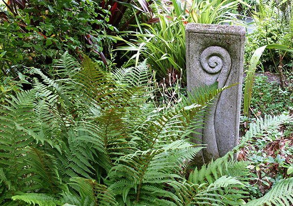 The koru is a theme in my Dog-Path Garden.