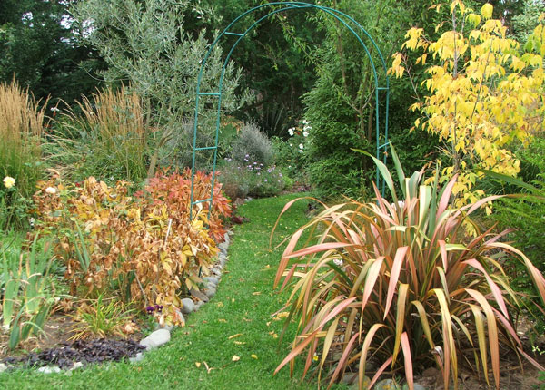 The peonies are in full autumn foliage colour.