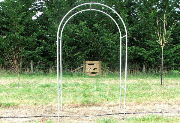 The archways were home-welded by Non-Gardening Partner.