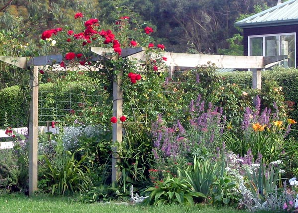 This Photo Looks Back In The Direction Of The House. Red Climbing Rose ...