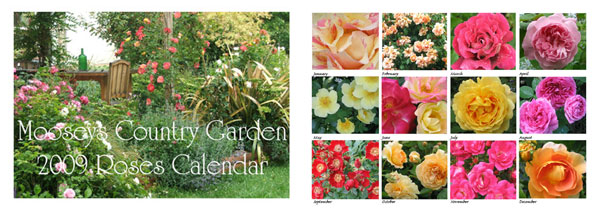 This is the Roses-1 calendar.