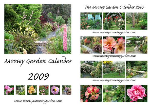 The garden looks beautiful in all the photographs...