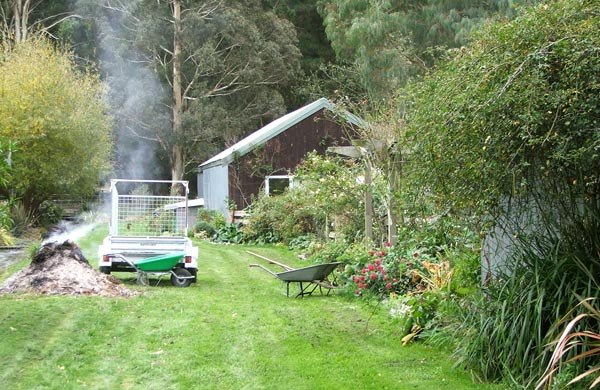 The burning pile, the trusty green wheelbarrow - and check out the cerise red dahlias flowering madly by the pergola!