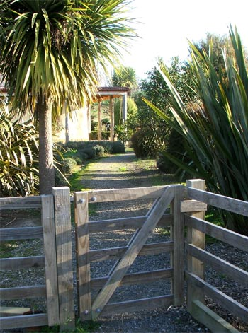 Flaxes and Cordylines surround a New Zealand cottage gate.