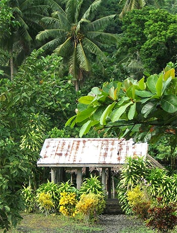 A fale, with its ornamental garden.