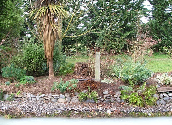 This is a photograph of the Dog-Path Garden, minus its overgrown Phormum Tenax.