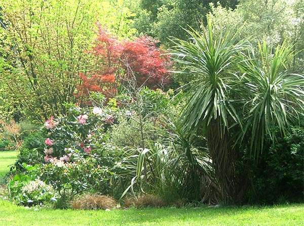 I love green cordylnes - but they are oh so messy!