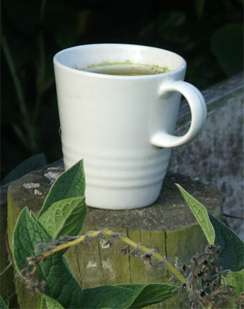 My garden is full of abandoned cups of tea and coffee!