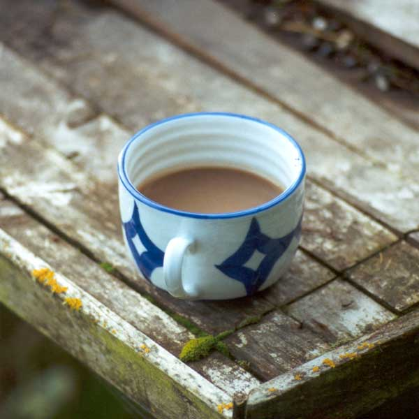 So many coffee cups get left outside in my garden.