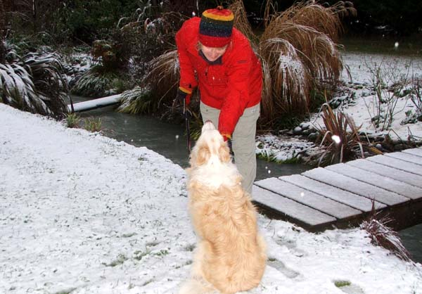 Head Gardener and Rusty in the snow.