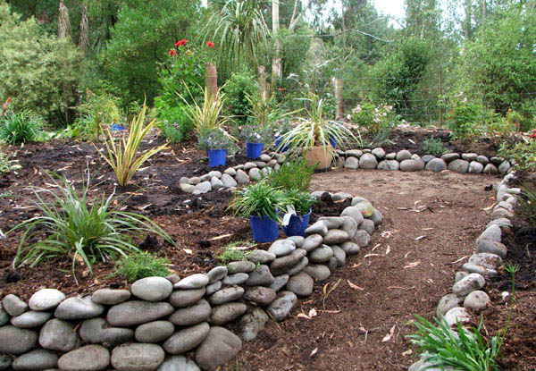 The blue pots are Rosemary plants.
