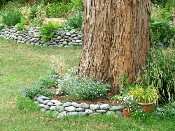 Around The Big Gum In The House Lawn, And Behind To Retain The Shrubbery.  Stone Walls