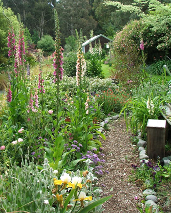 Lined with flowering foxgloves.