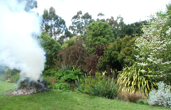What silly gardener would take a photograph of her garden bonfire?
