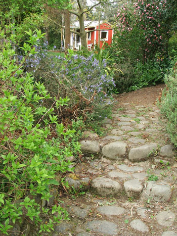 The Laundry path is weeded!