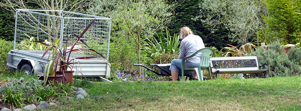 Head Gardener hard at work...