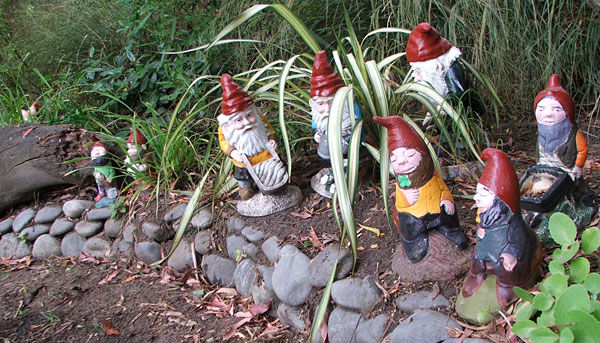 Some of my gnomes...