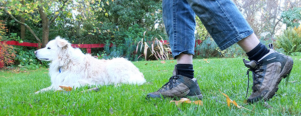 My winter gardening boots and my dog Rusty.