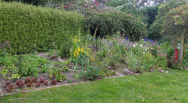The Herb Spiral is full of flowering annuals.