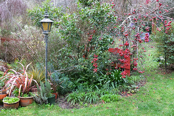 I love that red Phormium in the pot.