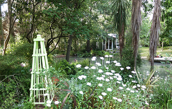 Shasta daisies, and the new obelisk.