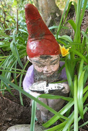 Gnome reading by the pond.
