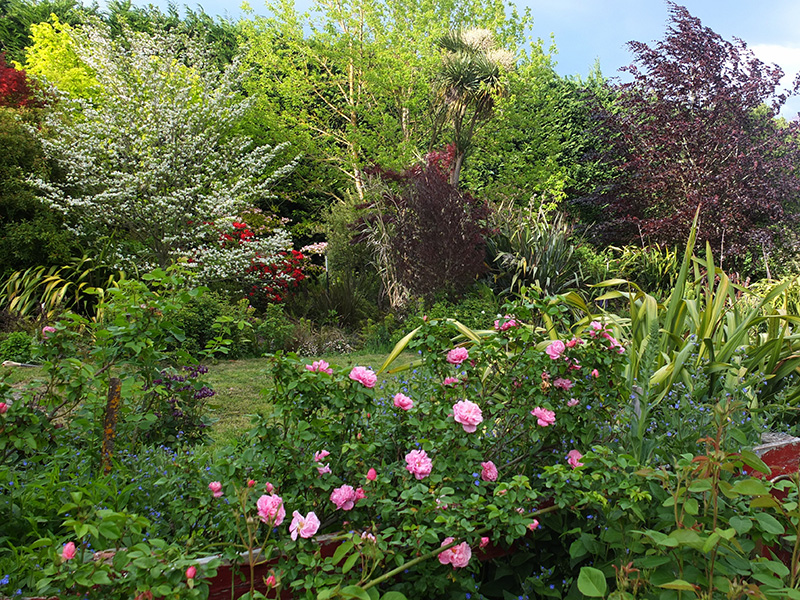 ... Woodshed And The Sleep Out Is Sheltered, The Spongy Grass Perfect For  Flopping Onto And Cloud Watching. The Sleep Out Has Its Own Small Shade  Garden Of ...