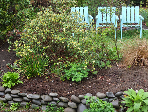 A pale lemon. Check out the infilled little garden, with new stone wall!
