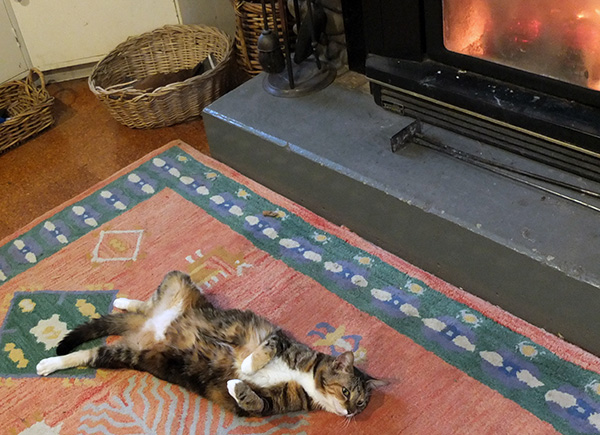 Relaxing by the log-burner.