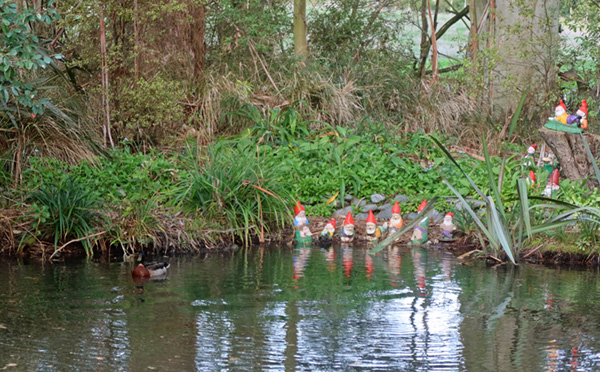 Spot the duck? And the gnomes?