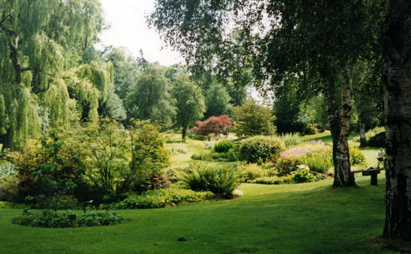 I liked visiting this garden.