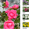 2018 Flowering Shrubs Calendar