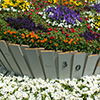 Ellerslie Flower Show 2014