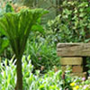 Wattle Woods Garden Bench