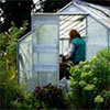 Head Gardener in the Glass-House
