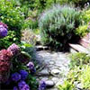 Assorted Gardening Sites