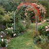 Red & Pink Rose Arches