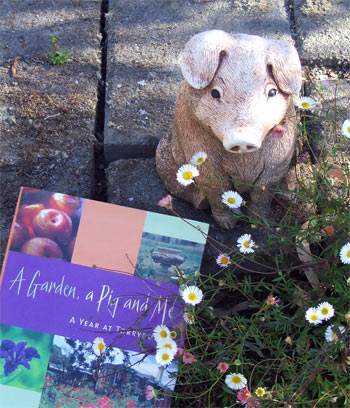 A lovely tale by Jenny Ferguson about her garden at Torryburn, Australia.