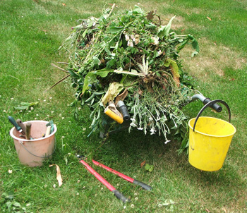 Including filling up the wheelbarrow with large amounts of rubbish...