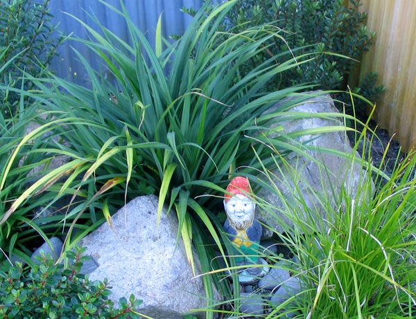 A nice spot for a gnome.