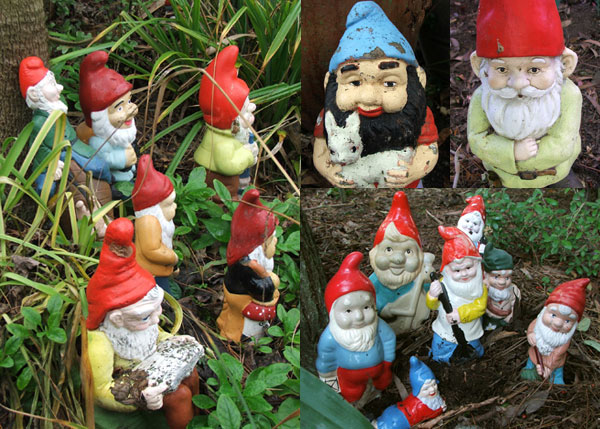 These gnomes live by the pond.