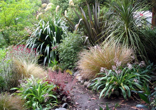 Garden Ideas Nz landscape garden - native new zealand design | gardening tips