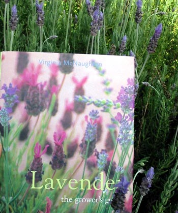 The Growers Guide Lavender