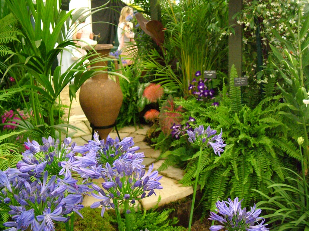 Hampton court flower show picture gallery 1 for Plants for outdoor garden