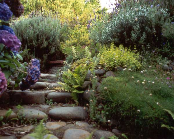 Stone path and steps for Garden path stones